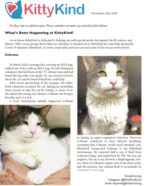 KittyKind May 2020